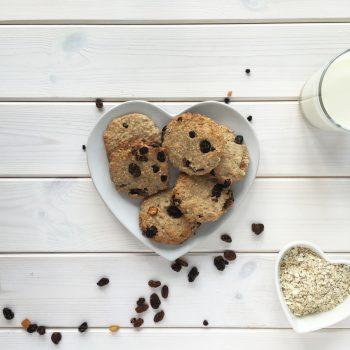 Sugar Free Oat & Raisin Milk Cookies